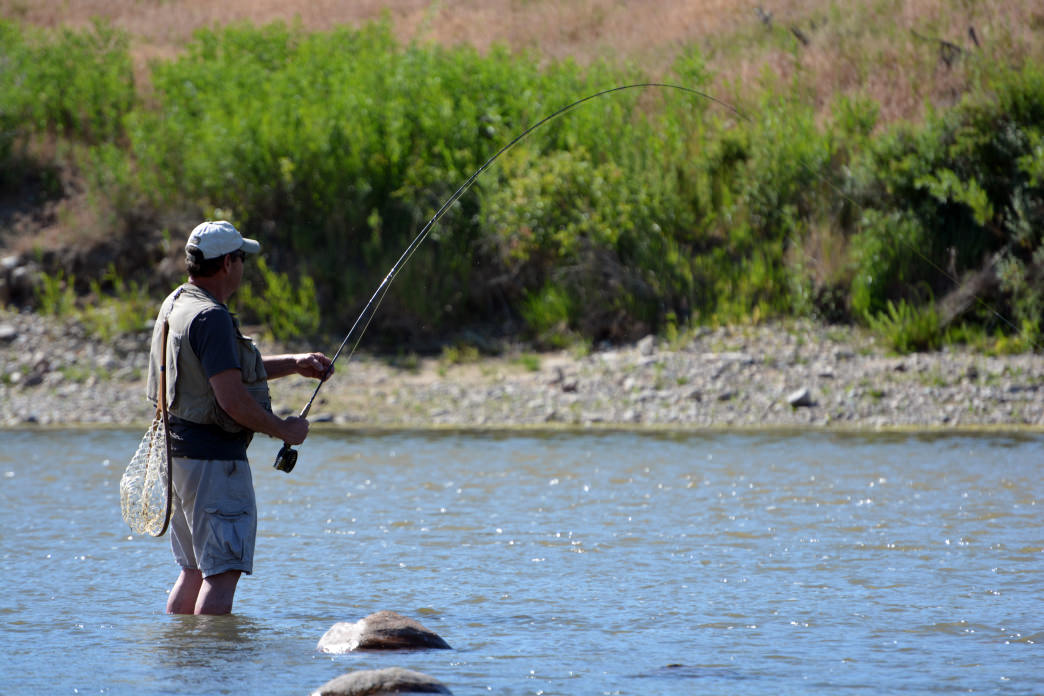 A guide to world class fishing in the wind river valley for Fishing in the wind