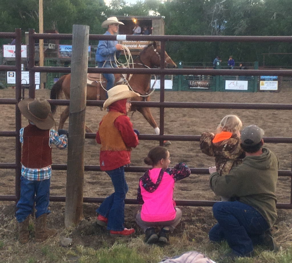 Dubois Friday Night Rodeo @ Clarence Allison Memorial Arena